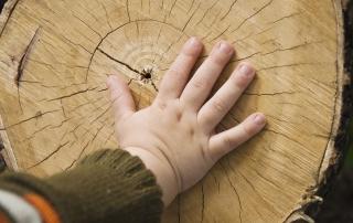 Φροντίδα ξύλινου δαπέδου