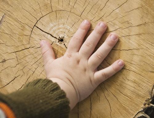 Φροντίδα ξύλινων δαπέδων